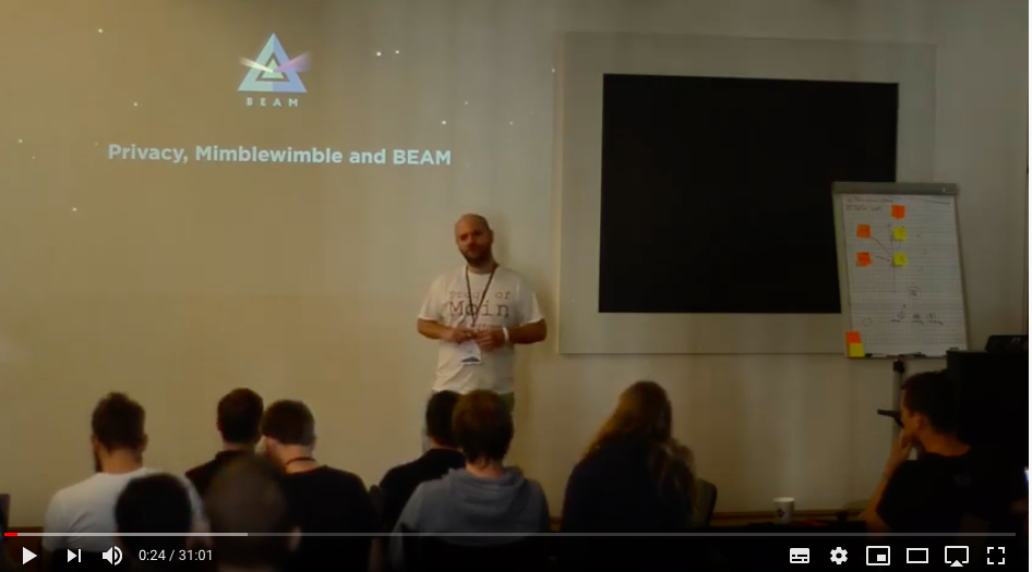 Why we need Beam Privacy - Omri Erez - Proof of Moin 2019